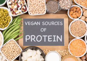 protein alternatives for vegans