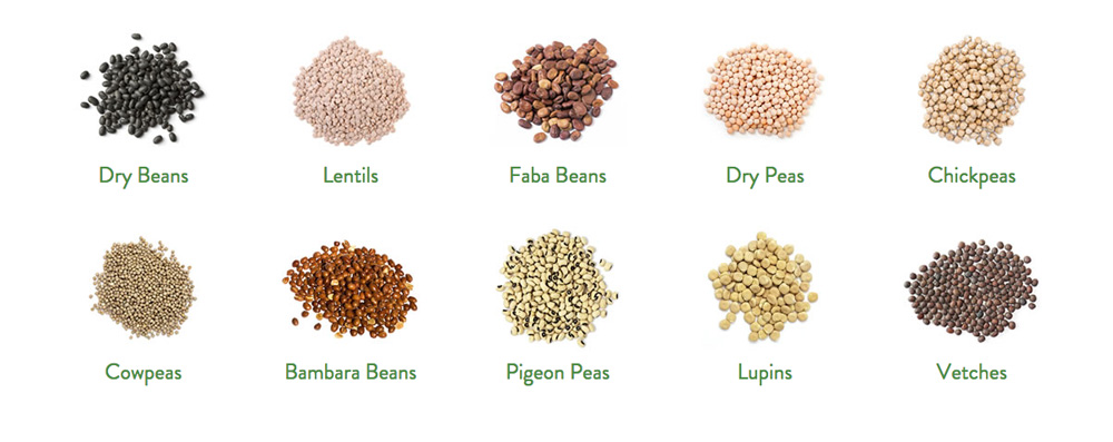 different kinds of pulses