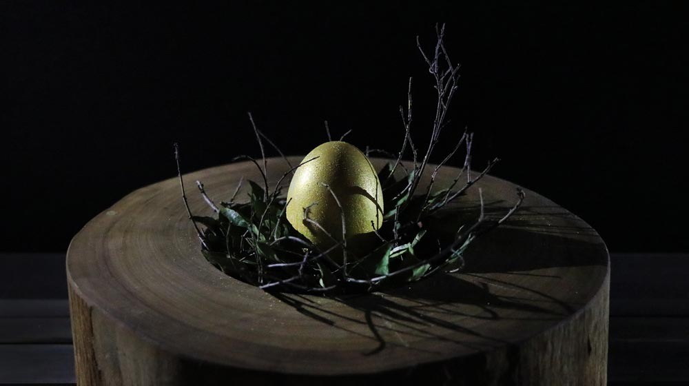 exhibit a golden egg