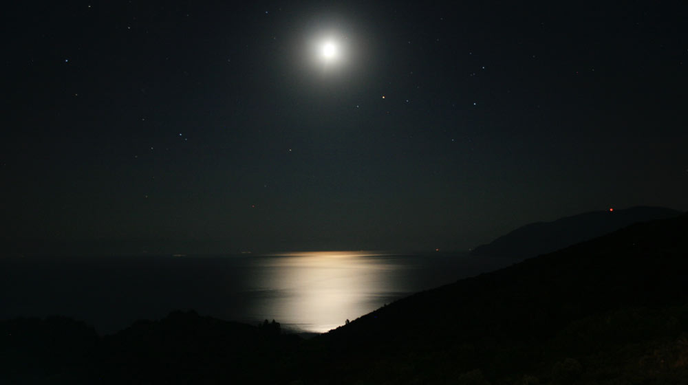 moonlight beach walk