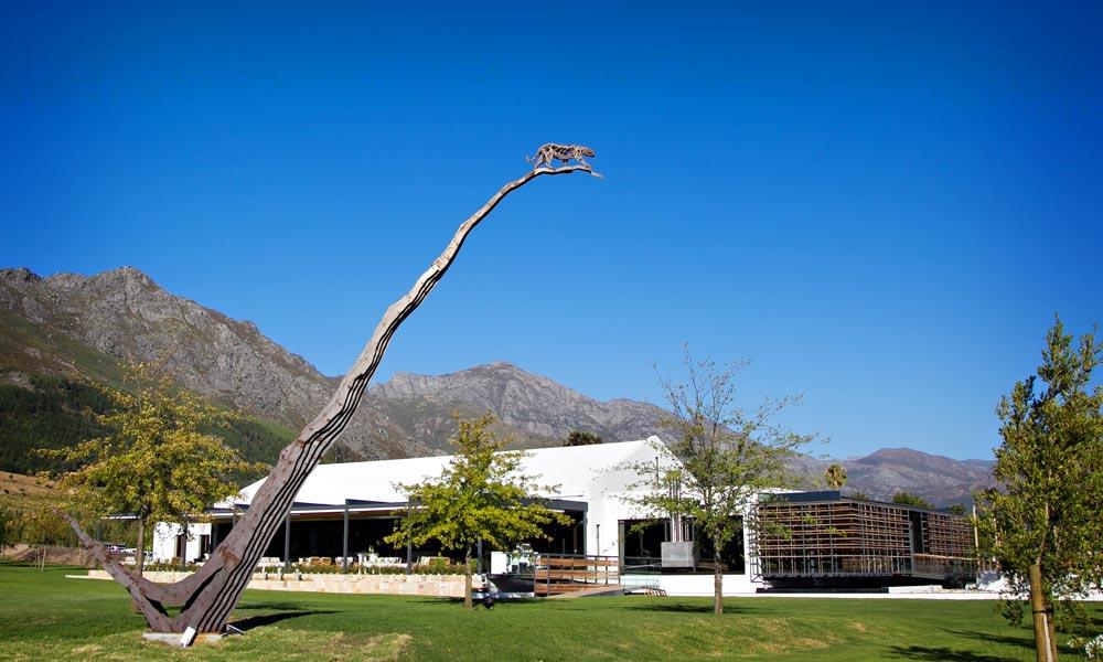 Leopards-Leap Wine Farm