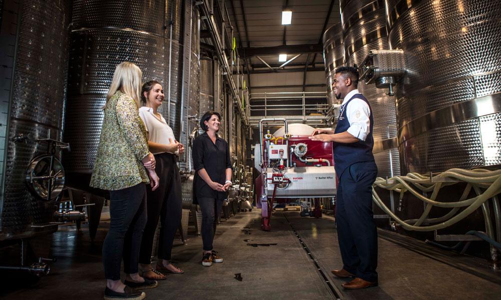 Hazendal Wine cellar tour